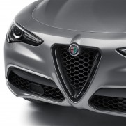 Stelvio Front Grill/Air Intake for QV Version